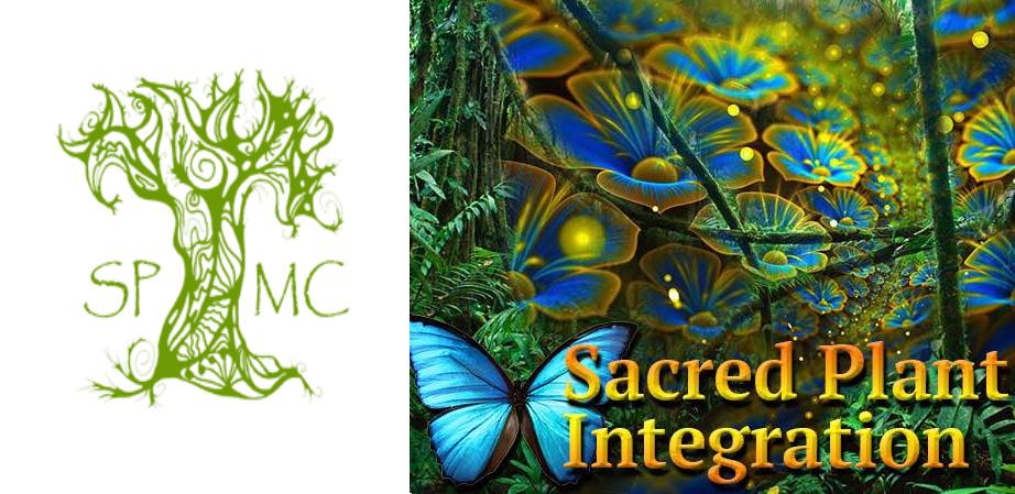Spirit Plant Medicine Integration Gathering