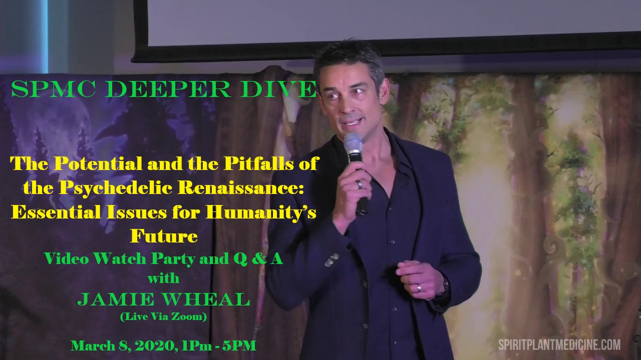 The Potential and Pitfalls of the Psychedelic Renaissance: Essential Issues for Humanity's Future – with Jamie Wheal