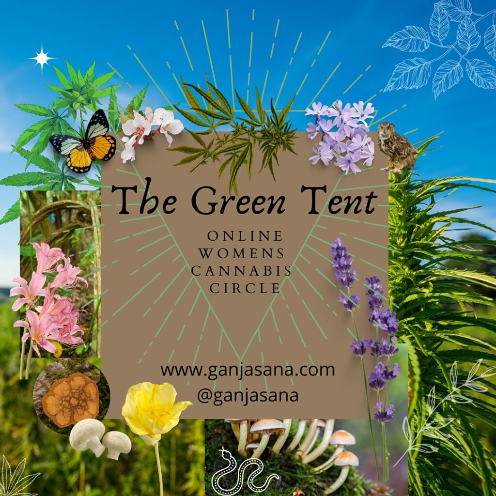 The Green Tent: Online Women's Cannabis Yoga Circle