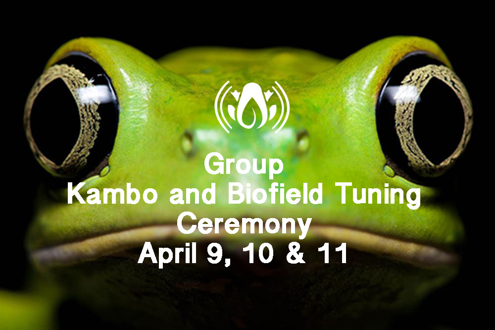 April 9:  3 Day Kambo Ceremony with Biofield Tuning