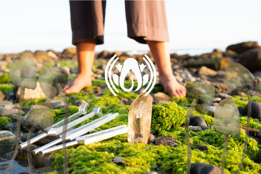 March 20:  Empowering Your Voice: Sacred Forest Medicine Biofield Tuning