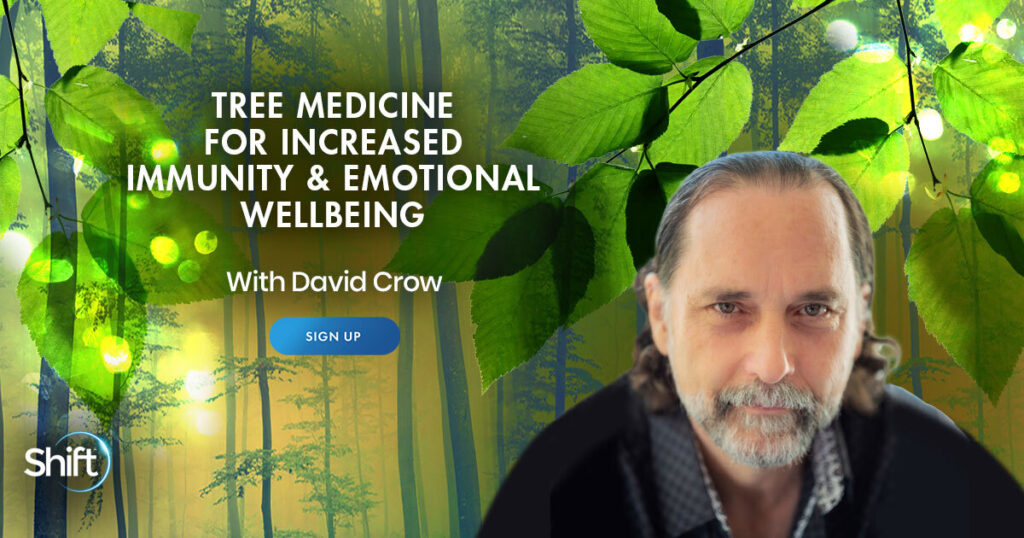 April 24: Tree Medicine for Increased Immunity & Emotional Wellbeing with David Crow