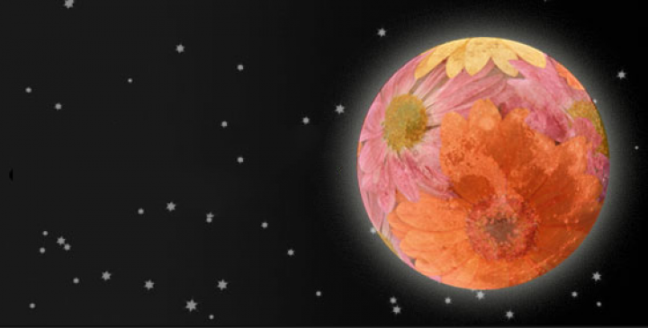 """May 26, 7PM PST:  Full Super """"Flower"""" Moon Ceremony and Virtual Song & Drum Circle!"""