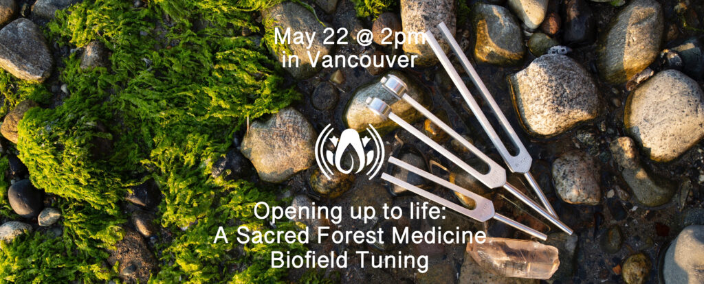 Opening up to life: A Sacred Forest Medicine Biofield Tuning