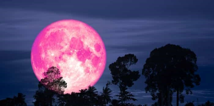 """April 24, 7PM PST:  Full Super """"PINK"""" Moon Ceremony and Virtual Song & Drum Circle!"""