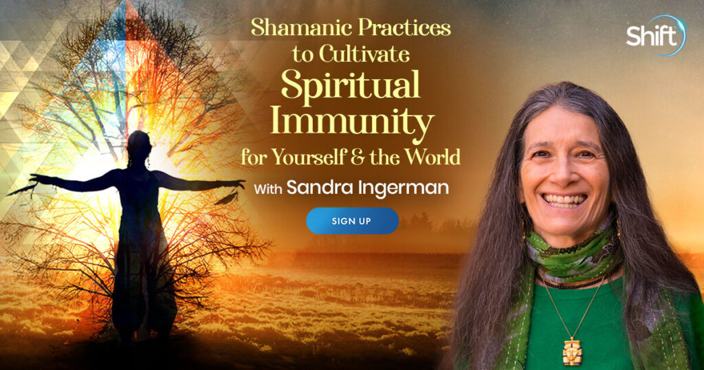 Shamanic Practices to Cultivate Spiritual Immunity for Yourself & the World with Sandra Ingerman