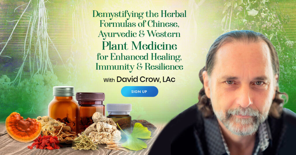 Demystifying the Herbal Formulas of Chinese, Ayurvedic & Western Plant Medicine for Enhanced Healing, Immunity & Resilience with David Crow